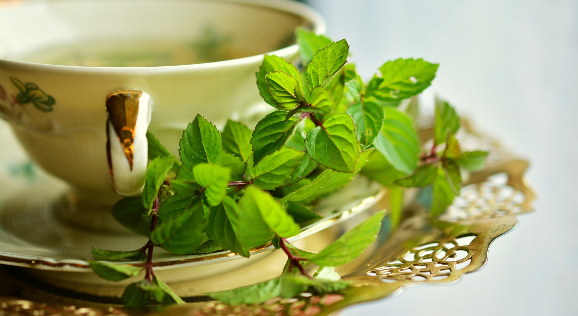 6 Healing herbs and spices that can boost your wellness every day